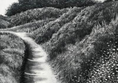 January Path by Sorca O'Farrell