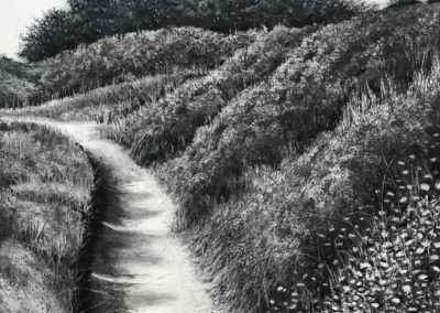 January Path