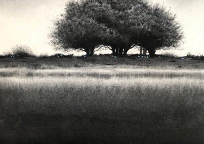 Journey by Sorca O'Farrell